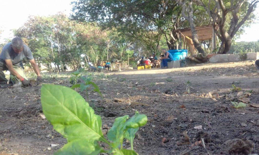 Vecinos de La Isabelica
