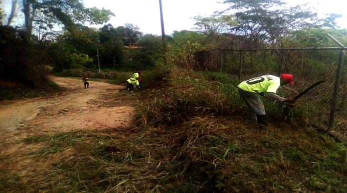 Avanzan labores de saneamiento y desmalezado en el eje occidental de Carabobo