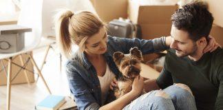 preguntas antes de tener una mascota