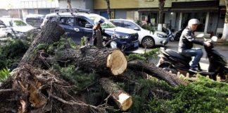 tormenta en China