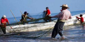 se ha potenciado la pesca artesanal