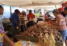 Feria del Campo Soberano favorece a familias en Puerto Cabello