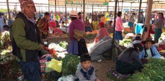 Gobierno Peruano promulga nueva ley de cooperativas agrarias