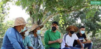 Jóvenes emprendedores apuestan por la agricultura