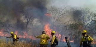 Bolivia logra controlar incendios
